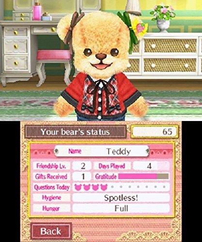 teddy together status